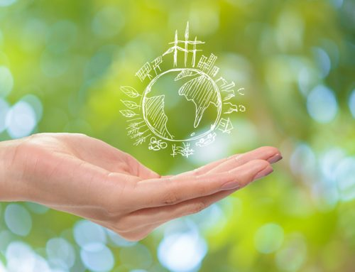 Making money and doing good – the rise of sustainable and impact investing